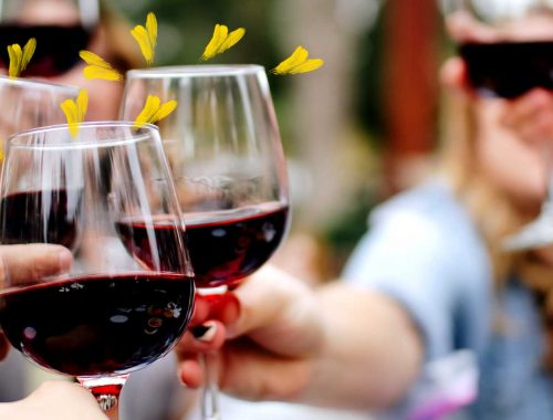 A Short and Simple Guide to Hosting a Wine Tasting at Home!